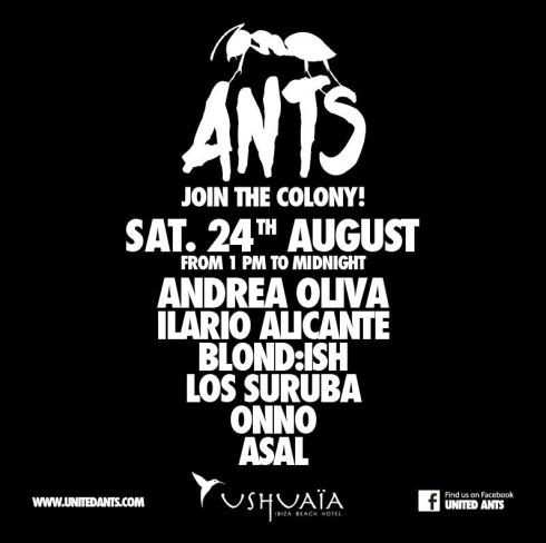Ants Flyer24.08